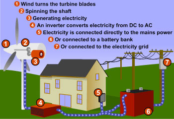 how wind energy generate electricity